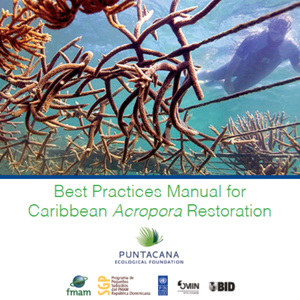 Acropora Restoration Best Practices Manual ABK v4